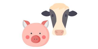 maiale e mucca disegno